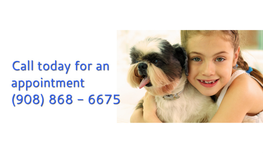 Elizabeth Veterinary Hospital944 Elizabeth Ave Elizabeth NJ 07201908